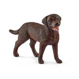 Labrador Retriever Hembra.