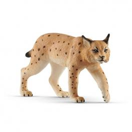Lince.