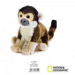 National Geographic - Mono Ardilla Mediano.