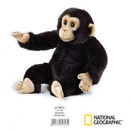 National Geographic - Chimpancé Mediano.