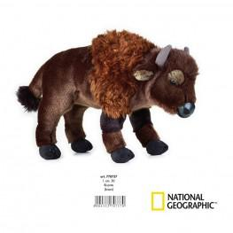 National Geographic - Bisonte Mediano.